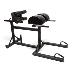 ghd-bench-glute-ham-developer-hamstring-allenamento-dorsali-panca-addominali-glutei
