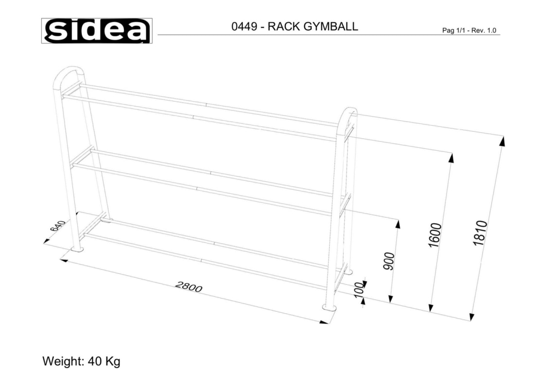 0449 - Rack Gymball-1