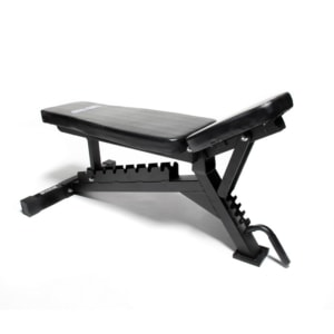 Professional Bench with wheels