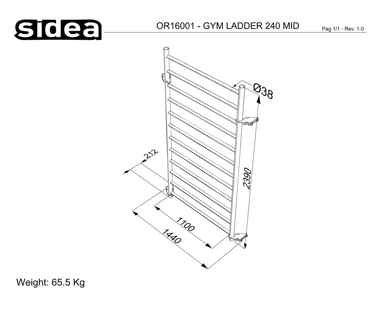 OR16001-OR16002 Gym Ladder